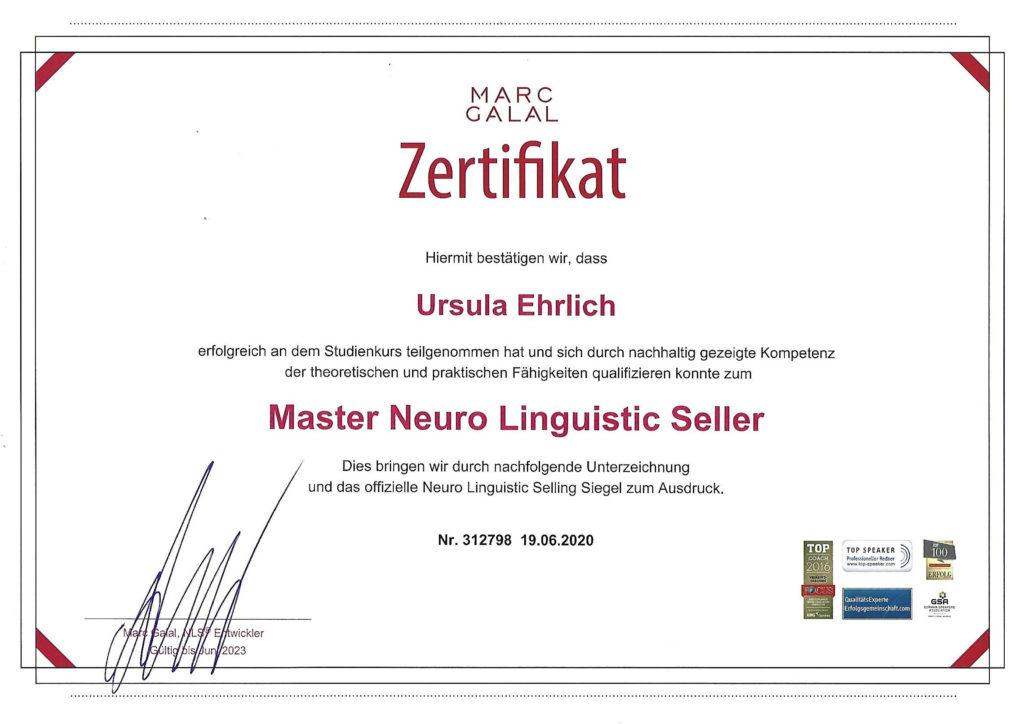 Master Neuro Linguistic Seller